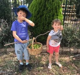Eden and Yicheng carring plums 2019 Dec