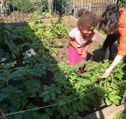 Miki and garden