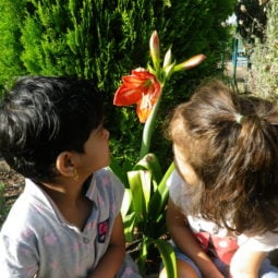 Flower Blooming looking Thameenah and Layla 2019